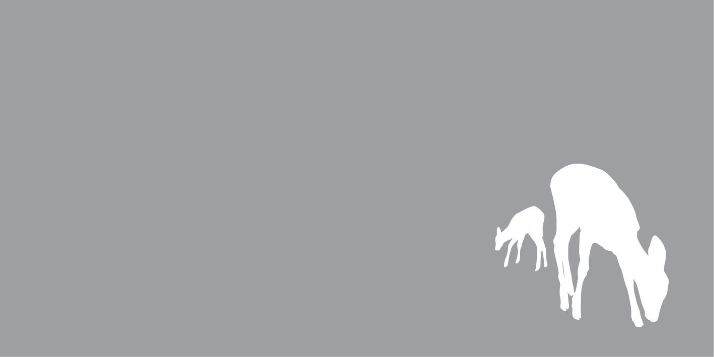 FO19024 herten